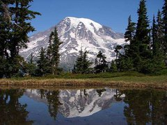Mt. Rainier National Park.jpg